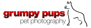 Grumpy Pups Pet Photography